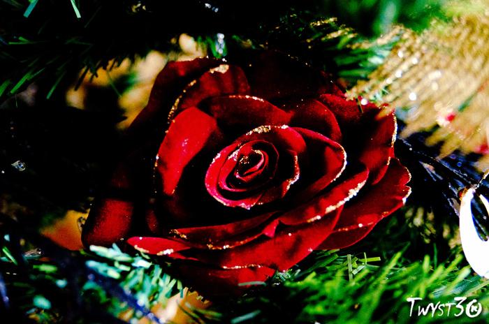 Noël File